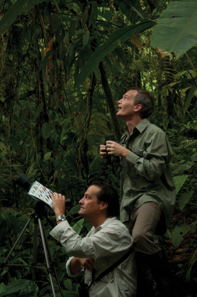 Birdwatching at the Ecuador eco lodge