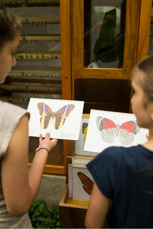 Niñas observando mariposas en el Centro de Vida