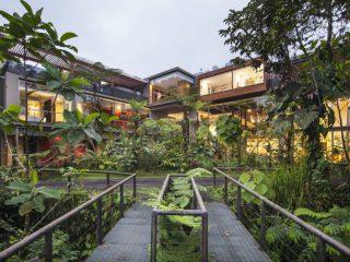 Un Lodge en el bosque en evolución: el nuevo spa sostenible de Mashpi