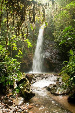 Waterfall at Mashpi Lodge