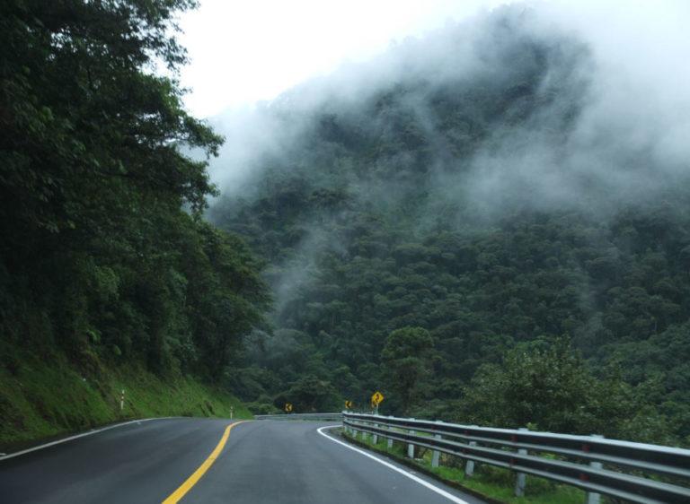 the-road-to-mashpi-768x562-1.jpg