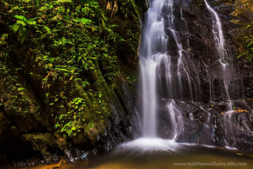 Cascada en reserva de Mashpi