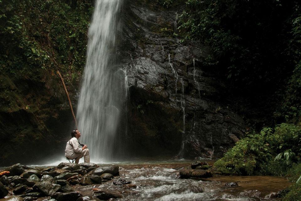 Cascada Sanadora en Mashpi Lodge