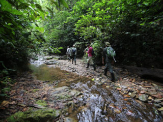 How Difficult are the Rainforest Activities at Mashpi Lodge?
