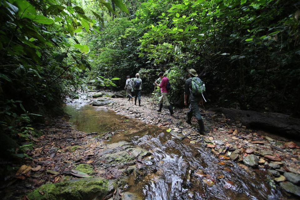 forest-walking-mashpi.jpg