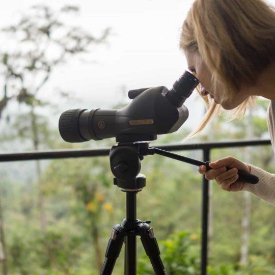 Observation of Mashpi Lodge's forest