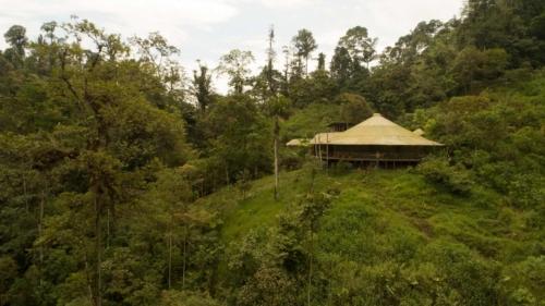 Mashpi Lodge's butterfly house