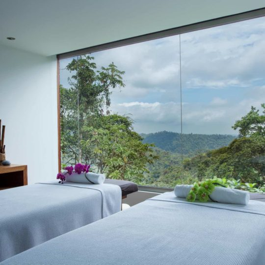 View from the spa at Mashpi Lodge