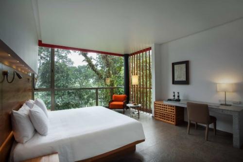 Wayra room at Mashpi Lodge
