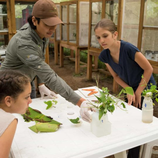 Mashpi Lodge's nature lab