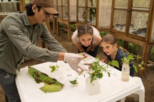Nature lab at Mashpi Lodge