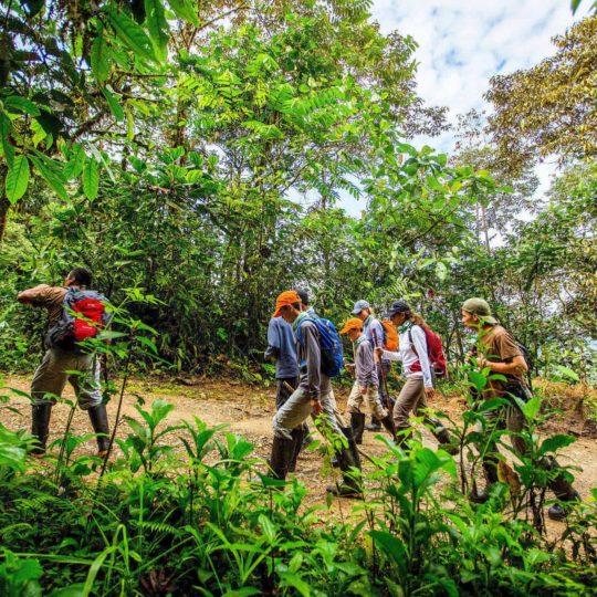 Trekking at Mashpi Lodge
