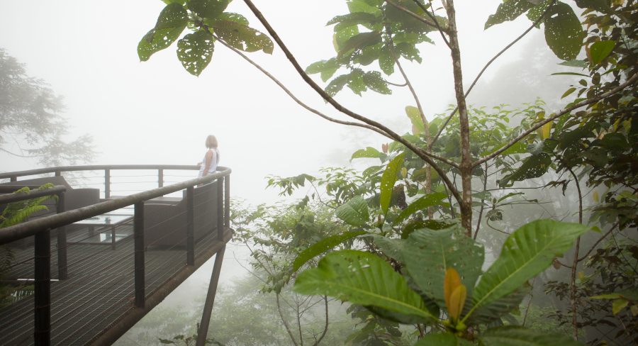 Foggy view from Exterior Lounge at Mashpi Lodge