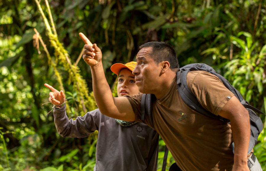 Guide teaches young visitor about the secrets of the forest.