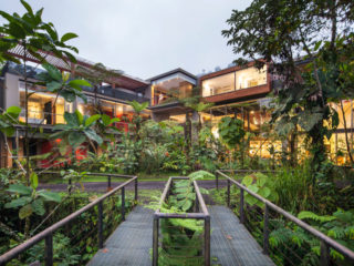 What Distinguishes Mashpi Lodge from other Ecuadorian Eco-Lodges?