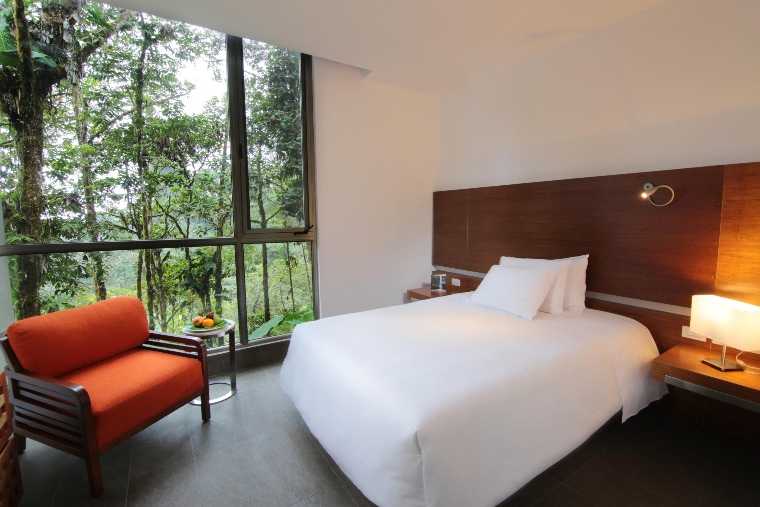 Wawa Room Rooms Amp Suites Mashpi Lodge